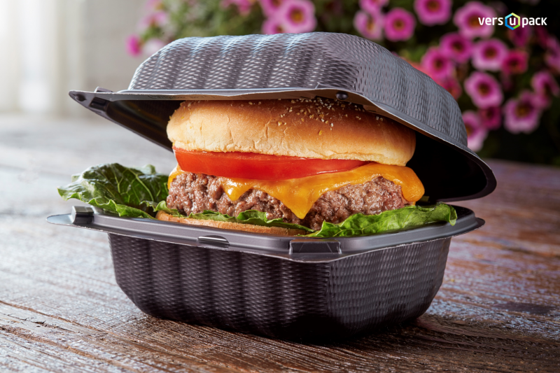Bio Burger Box To Go
